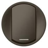 067934 - Лицевые панели для выключателя, Legrand Celiane (графит)